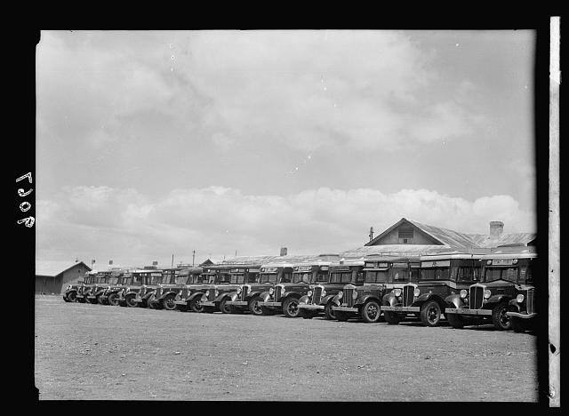 Palestine disturbances 1936. Row of buses used for transporting forces