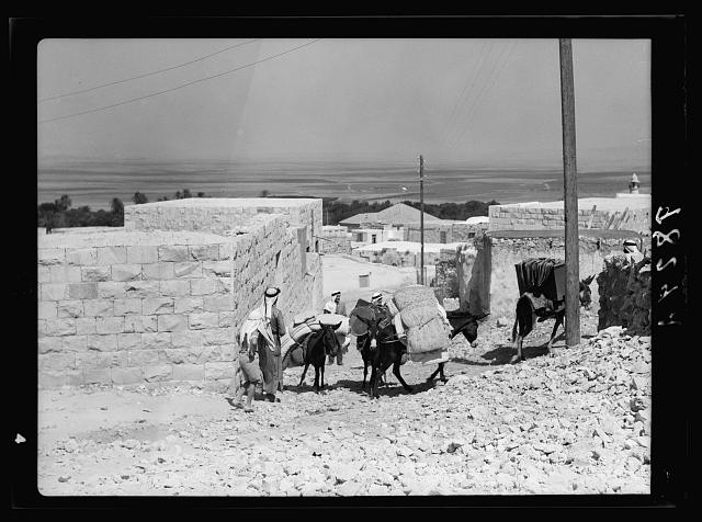 Jenin, Sept. 3, 1938. Inhabitants salvaging their house-hold effects, moving effects on donkeys