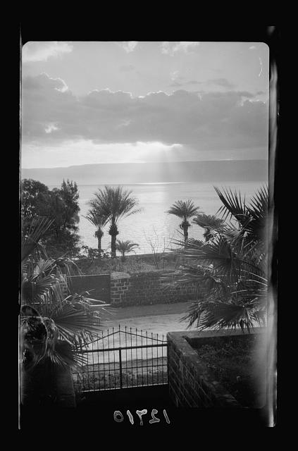 Sunrise on Galilee from Torrance garden [Scots Mission Hospital, Tiberias]