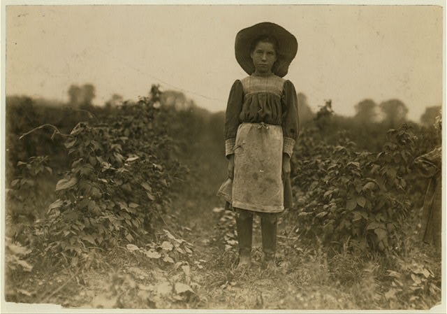 Bertha Marshall a berry picker on Jenkins Farm, Rock Creek, near Baltimore, Md. Been at it 2 summers. Picks about 10 boxes a day. (2 cents a box). Photo July 7, 1909.  Location: Baltimore, Maryland.