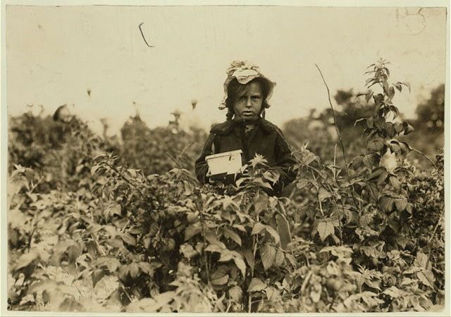 Annie Bissie, a little picker in the fields near B[alti]more. (See label 835).  Location: Baltimore, Maryland.