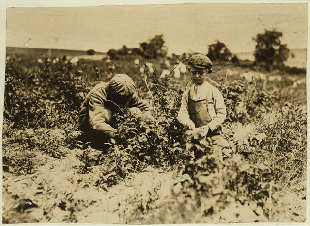 Johnnie Goldberg and father on a Rock Creek farm. Boy worked at Young Island, S.C. one winter. July 7, 1909.  Location: Baltimore, Maryland.