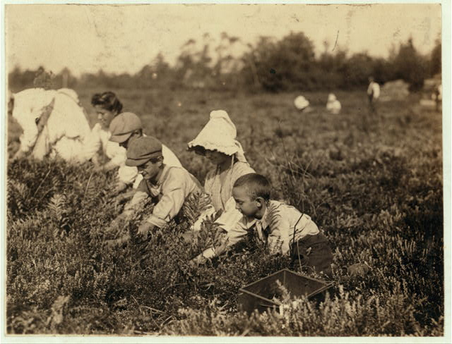 Richard Tevor, 73 Jones St., W.[?] Maniyunk (near Philadelphia) 8 years old. 5 years picking cranberries. Theodore Budd's Bog at Turkeytown, near Pemberton, N.J. This is the fourth week of school in Philadelphia and people will stay here two more Sept. 27, 1910. Location: Pemberton, New Jersey.