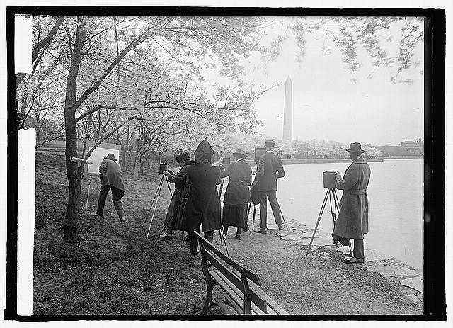 [Photographers shooting Cherry blossoms, Washington, D.C. 4/7/22]