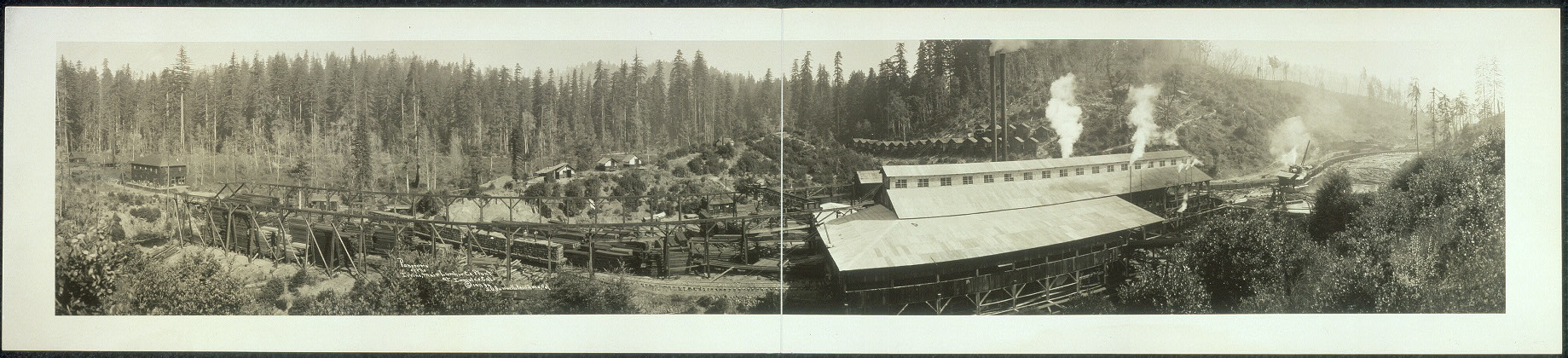 Panorama of the Irvine, Muir Lumber Co. plant at Irmulco