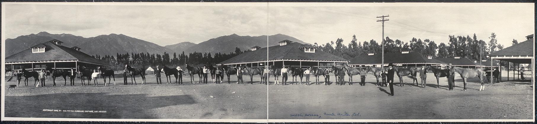 Welch horses, Santa Anita Race Track