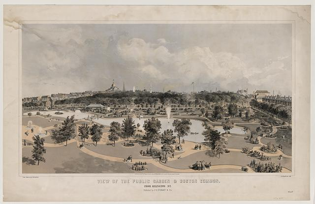 View of the Public Garden & Boston Common - from Arlington St.