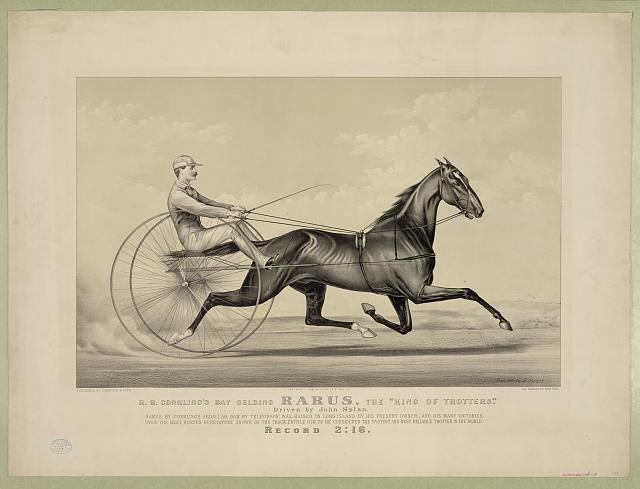 "R.B. Conkling's bay gelding Rarus, the ""King of Trotters"": driven by John Splan"