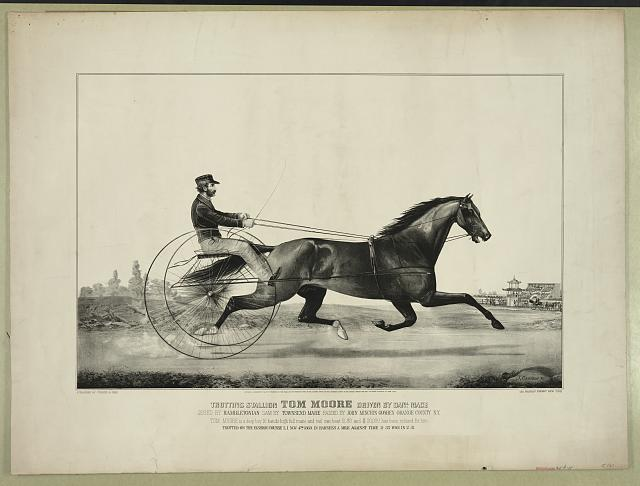 Trotting stallion Tom Moore driven by Danl. Mace: sired by Hambletonian  dam by Townsend Mare  raised by John Minchin  Goshen  Orange County, N.Y.