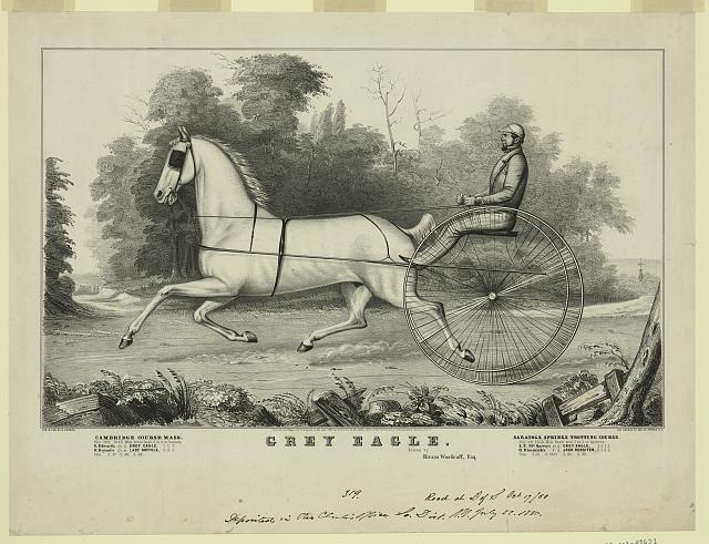 Grey Eagle, driven by Hiram Woodruff, Esq.