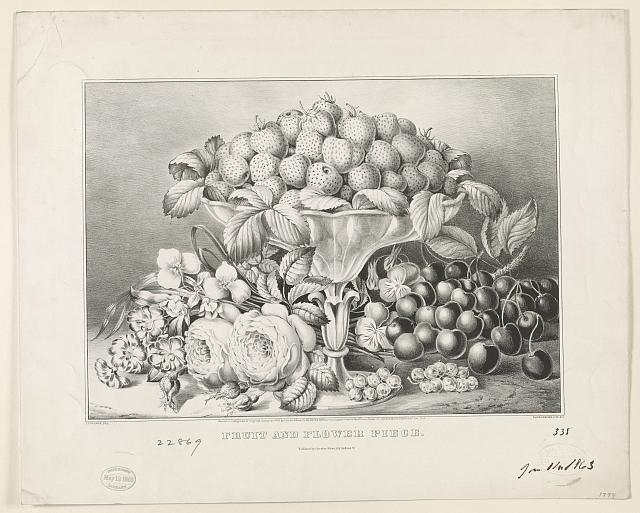 Fruit and flower piece