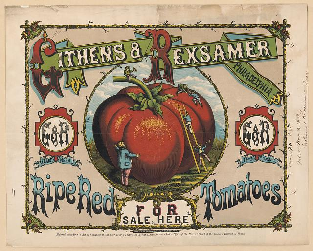 Ripe red tomatoes for sale here