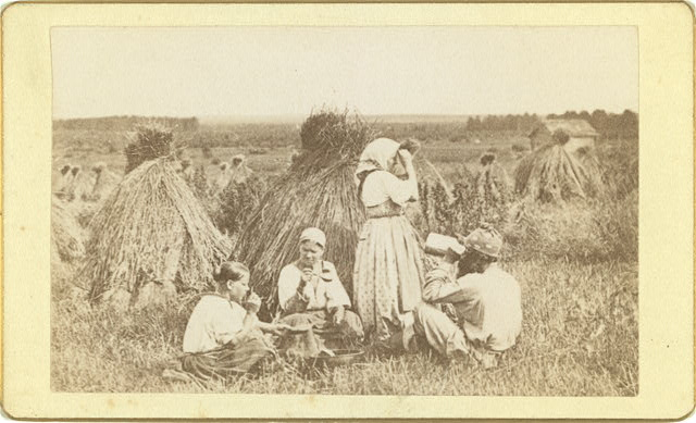 [Three female and one male peasant eating a meal in a wheat field]