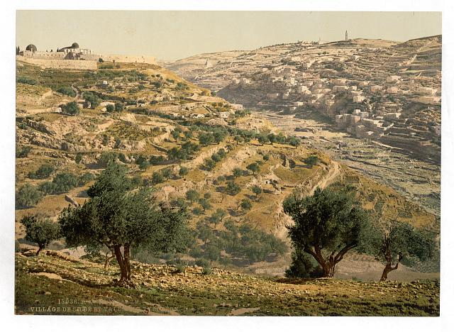[Siloam and the Tyrophean Valley, Jerusalem, Holy Land]