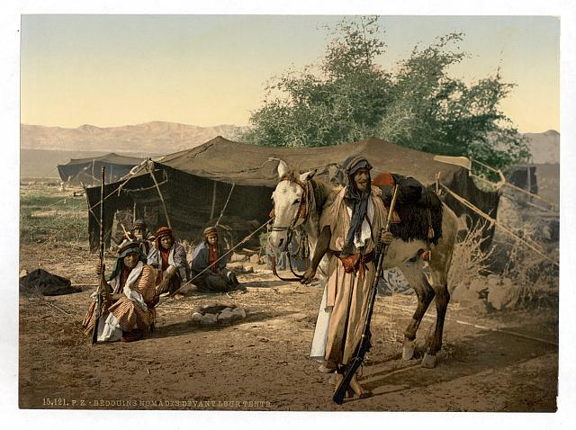 [Bedouins and their tents, Holy Land]