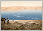 [Man with horse standing near the Dead Sea]