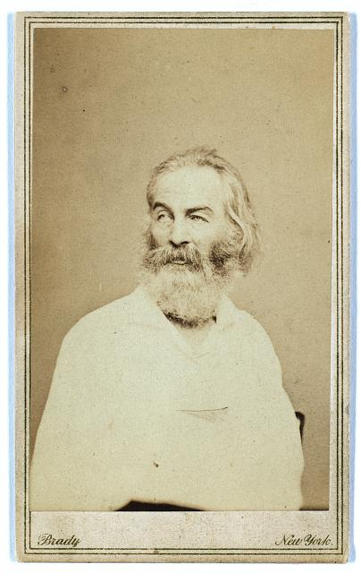 [Walt Whitman, half-length portrait, seated in chair, facing left]