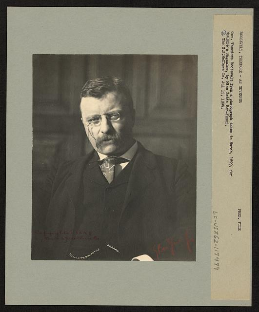 Portrait of Theodore Roosevelt as Governor, 1899