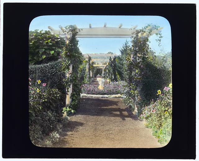 "[""Mariemont,"" Thomas Josephus Emery house, Honeyman Hill, Middletown, Rhode Island. Arbor pathway]"