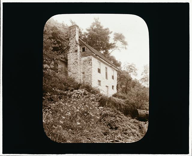[Johnston's Mill House, Albemarle County, Virginia. Hillside lilies]