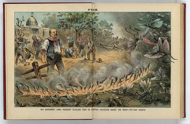 Our government farm -- President Cleveland finds an effectual protection against the twenty-five-year locusts
