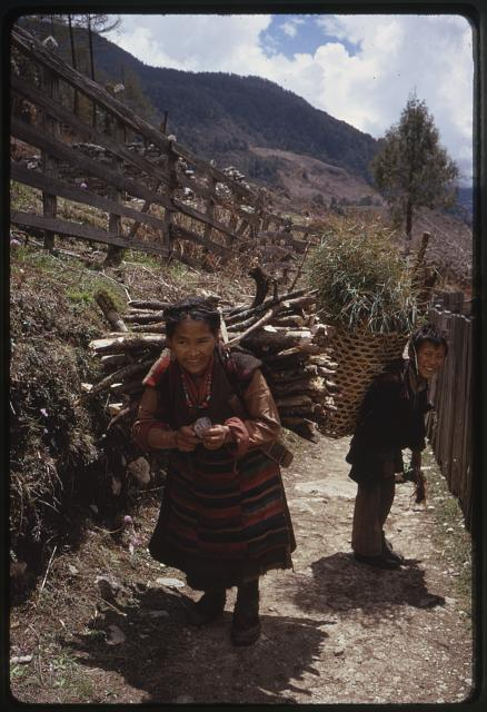 [Woman carrying wood on her back and man carrying vegetation in basket, walking down road in Lachung, Sikkim]