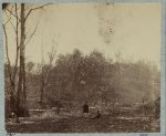 Chickasaw Bluffs, Miss. February 1864