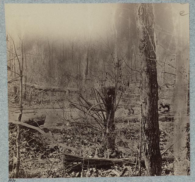Scene of General Wadsworth's death. Tree in foreground was shattered by shell that killed his horse