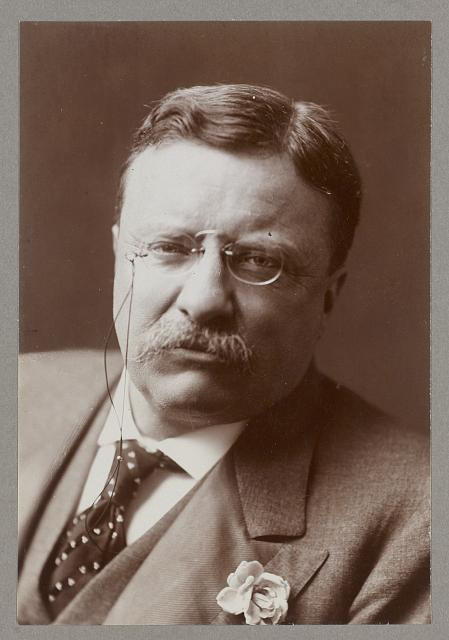 [Theodore Roosevelt, Pres., head and shoulders portrait]