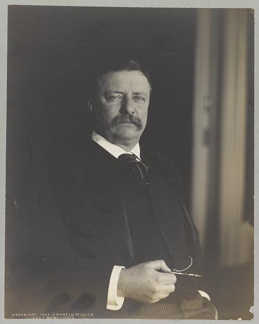 [Theodore Roosevelt, half-length portrait, facing right]
