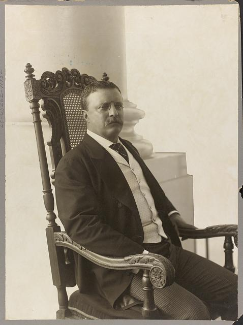 [Theodore Roosevelt, three-quarter length portrait, seated, turned right, facing front]