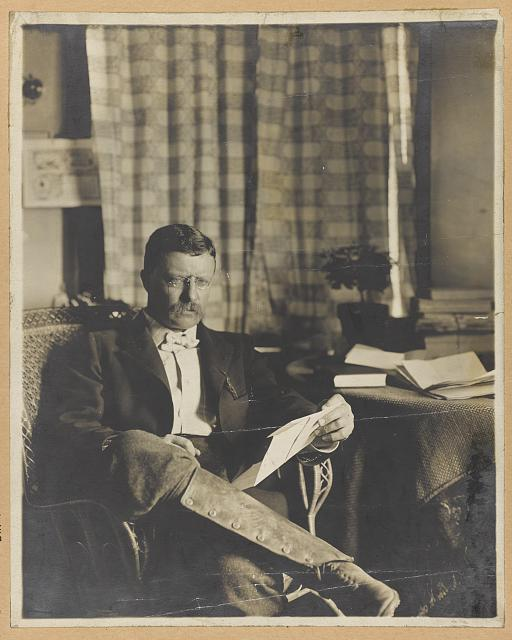 [Theodore Roosevelt, full-length portrait, seated, reading]