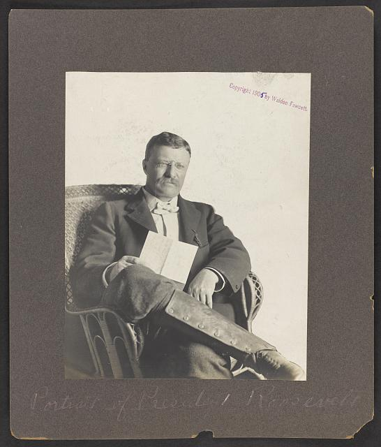 [Theodore Roosevelt, three quarter-length portrait, holding reading letter, legs crossed]