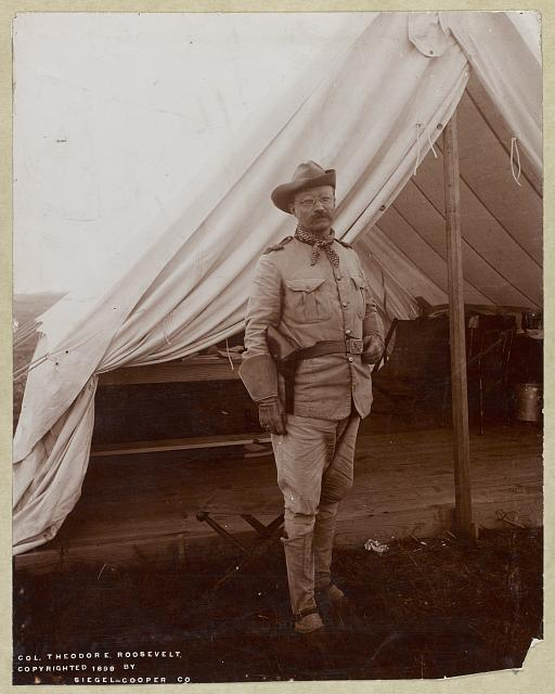 Col. Theodore Roosevelt