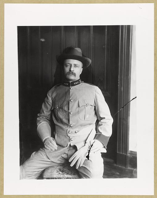 [Theodore Roosevelt, three-quarter-length portrait, seated, facing front, in uniform]