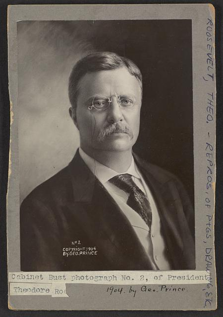 Cabinet bust photograph No. 2, of President Theodore Roosevelt