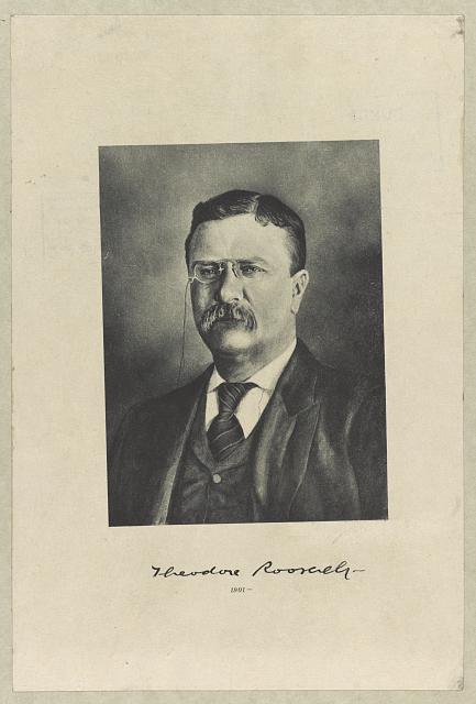 [Theodore Roosevelt, head-and-shoulders portrait, facing slightly left]