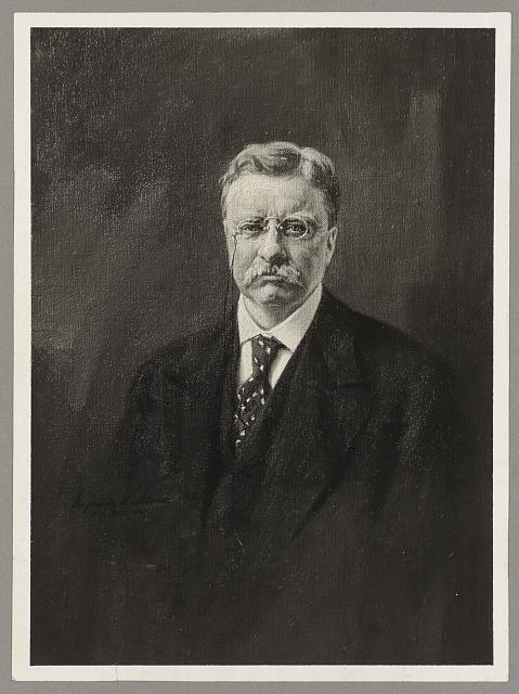 [Theodore Roosevelt, front view bust portrait of Mr. Roosevelt wearing glasses]