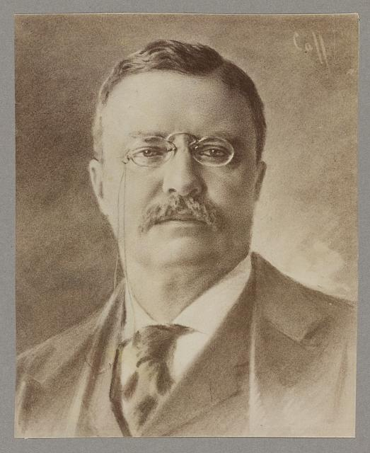 [Theodore Roosevelt, head portrait, facing front]