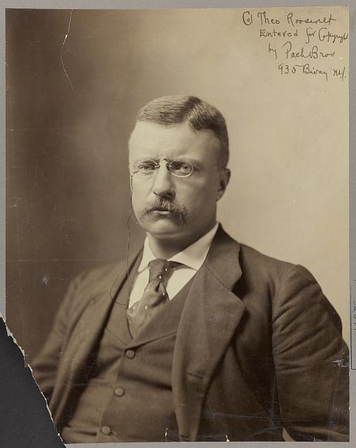 Col. Theo Roosevelt