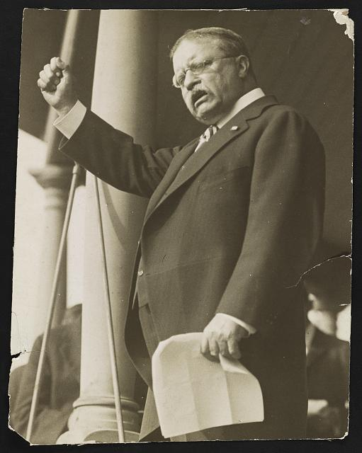 [Theodore Roosevelt, three-quarter length portrait, standing, facing left, speaking]