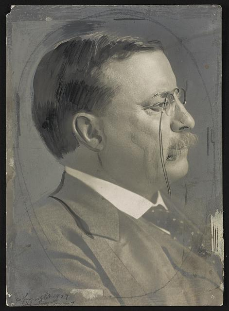 [Theodore Roosevelt, head-and-shoulders portrait, facing right]