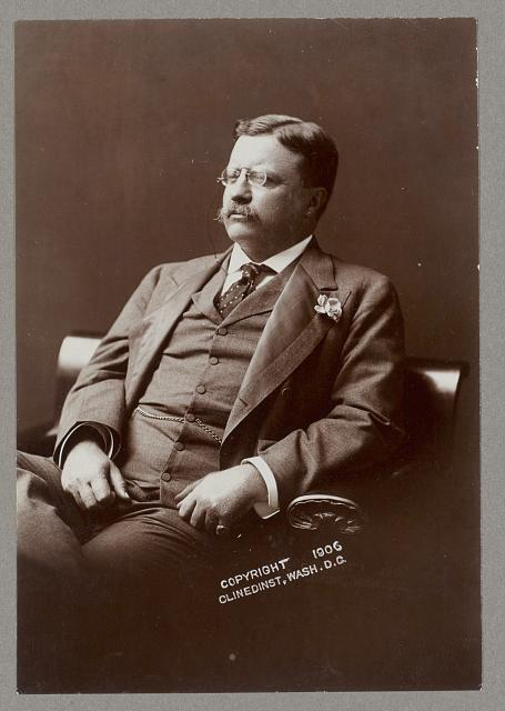 [Theodore Roosevelt, half-length portrait, seated, facing left]