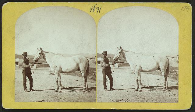 [Man and a horse standing.]