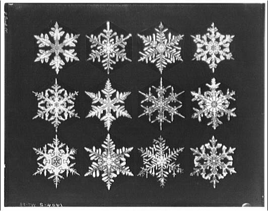 Winter scenes. Snowflakes, three rows of four